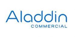 aladdin-vinyl-5